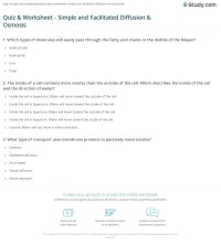 Quiz & Worksheet - Simple and Facilitated Diffusion ...