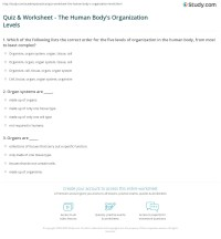 Quiz & Worksheet - The Human Body's Organization Levels ...