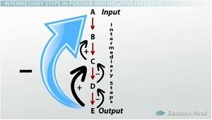 Intermediary Steps