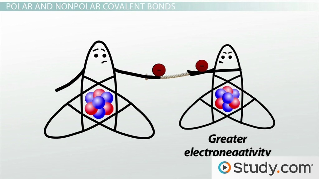 Covalent Bonds Predicting Bond Polarity and Ionic Character - Video