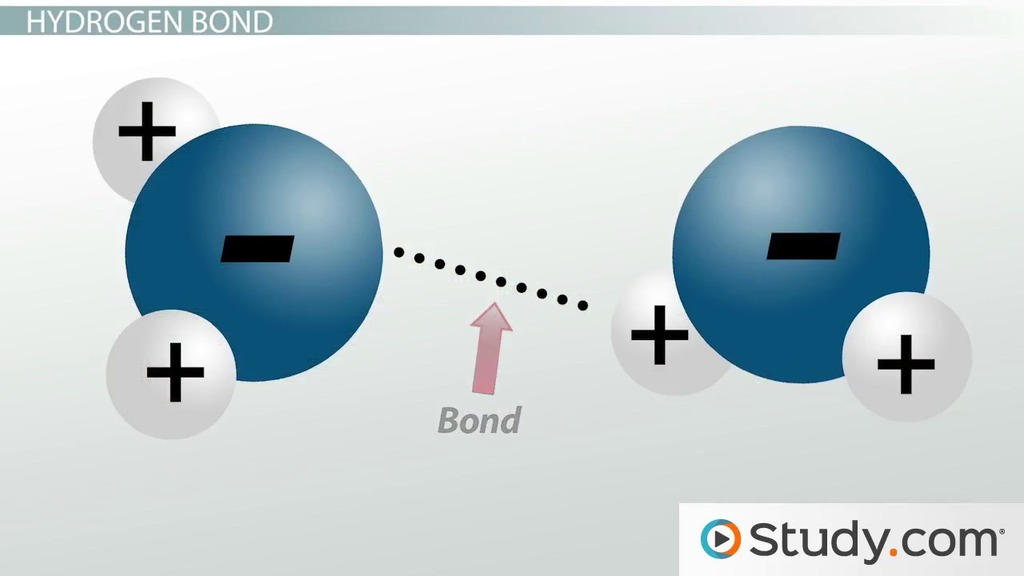 Dipoles  Dipole Moments Molecule Polarity - Video  Lesson