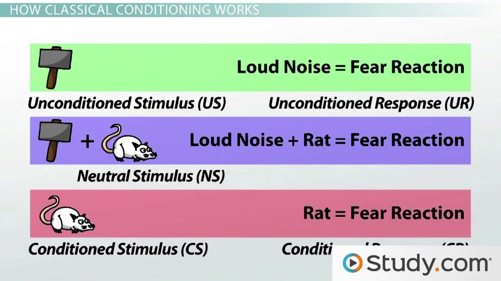 Classical Conditioning in Psychology Definition, Principles - examples of classical conditioning