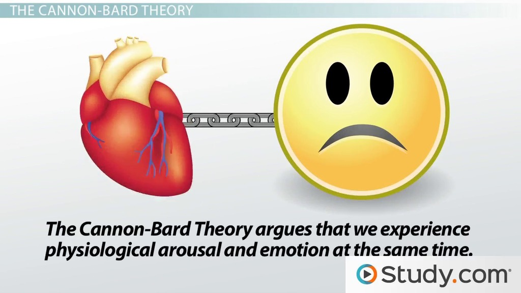 James-Lange  Cannon-Bard Theories of Emotion - Video  Lesson
