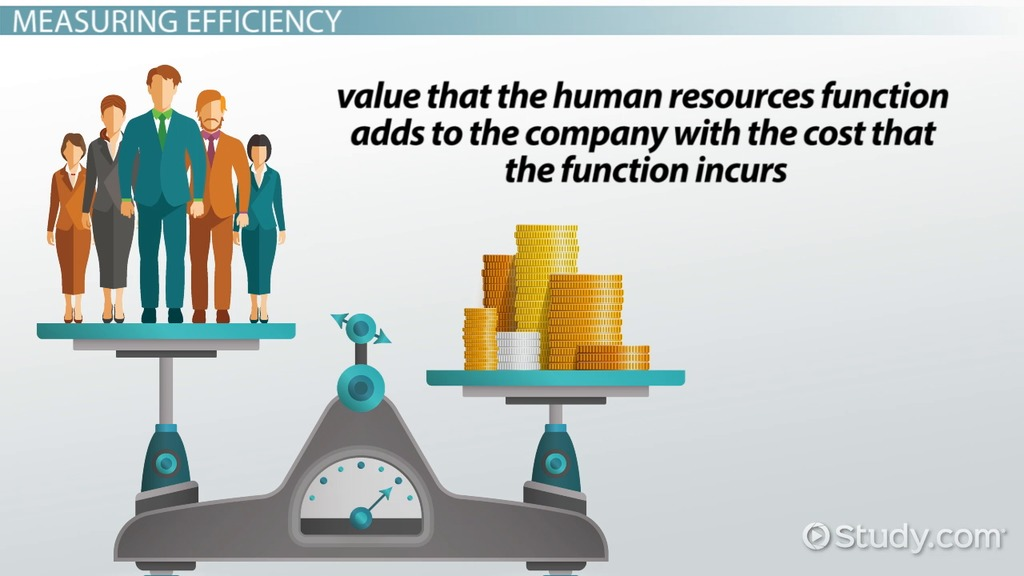 What are HR Metrics? - Definition  Types - Video  Lesson - human resources metrics examples
