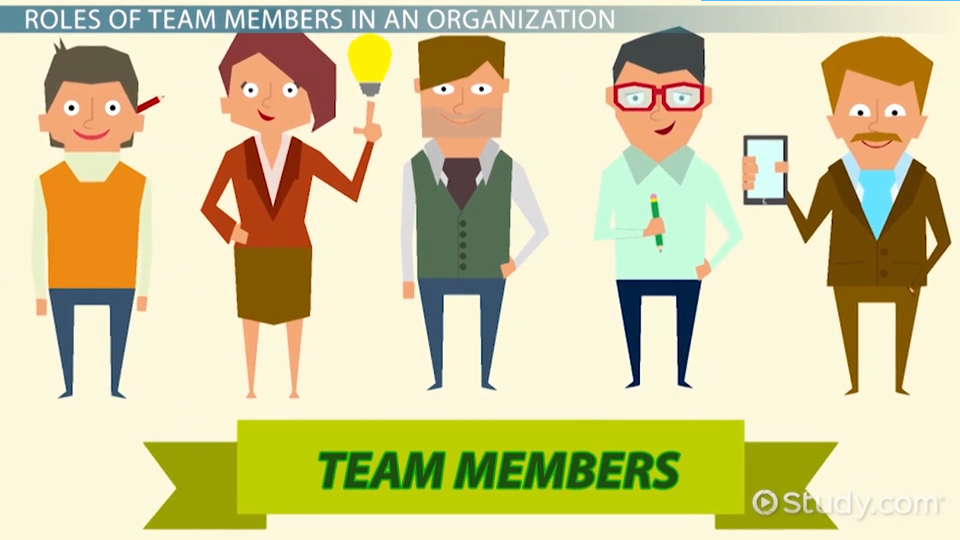 Team Members in an Organization Roles, Responsibilities