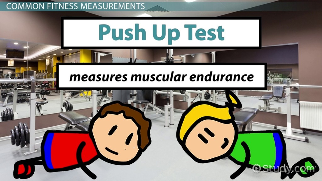 What is Fitness? - Definition, Components, Types  Examples - Video