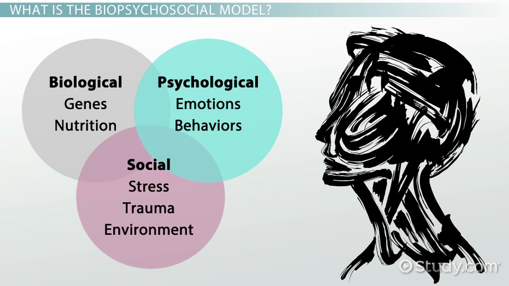 What Is The Biopsychosocial Model Definition Example