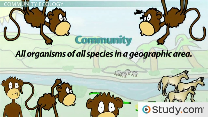The Environment, Levels of Ecology and Ecosystems - Video  Lesson