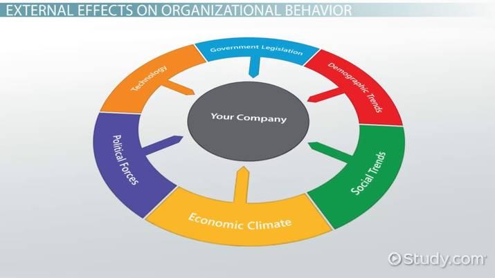 External Effects on Organizational Behavior - Video  Lesson