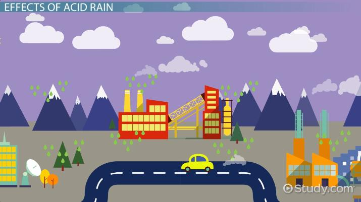 Acid Rain Effects  Causes - Video  Lesson Transcript Study