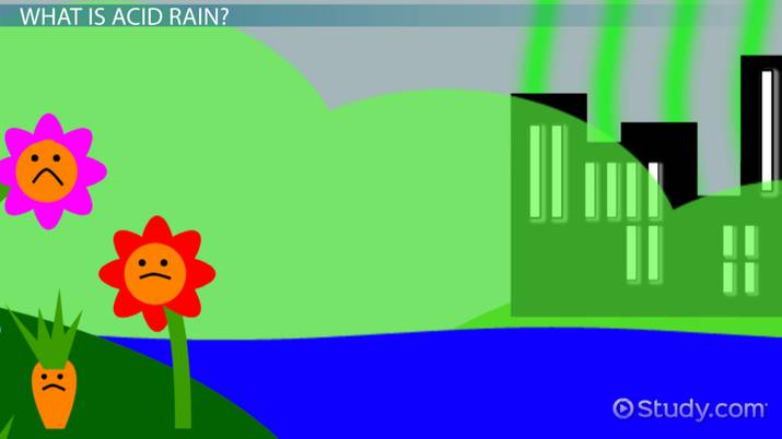 Causes  Effects of Acid Rain Lesson for Kids - Video  Lesson