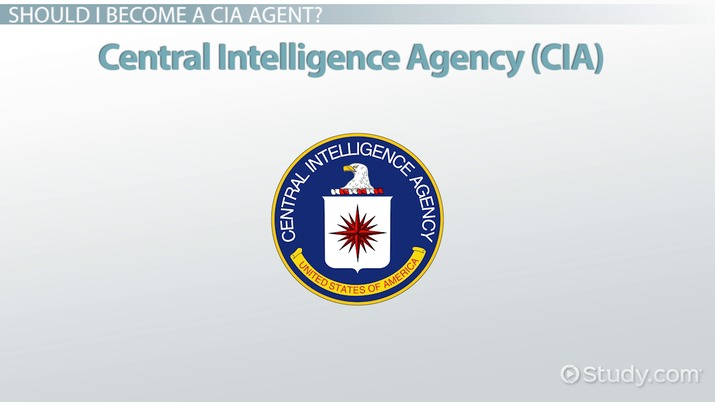 How to Become a CIA Agent Education and Career Roadmap