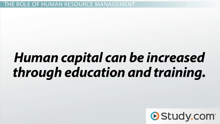 What Is Human Capital? - Importance to An Organization - Video