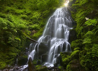 Beautiful Water Fall Scenery Wallpapers Famous Indian Hill Stations Creating Momentum For