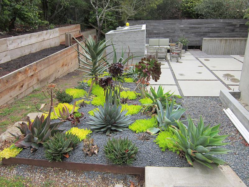 Desert Landscaping: How To Create Fantastic Desert Garden