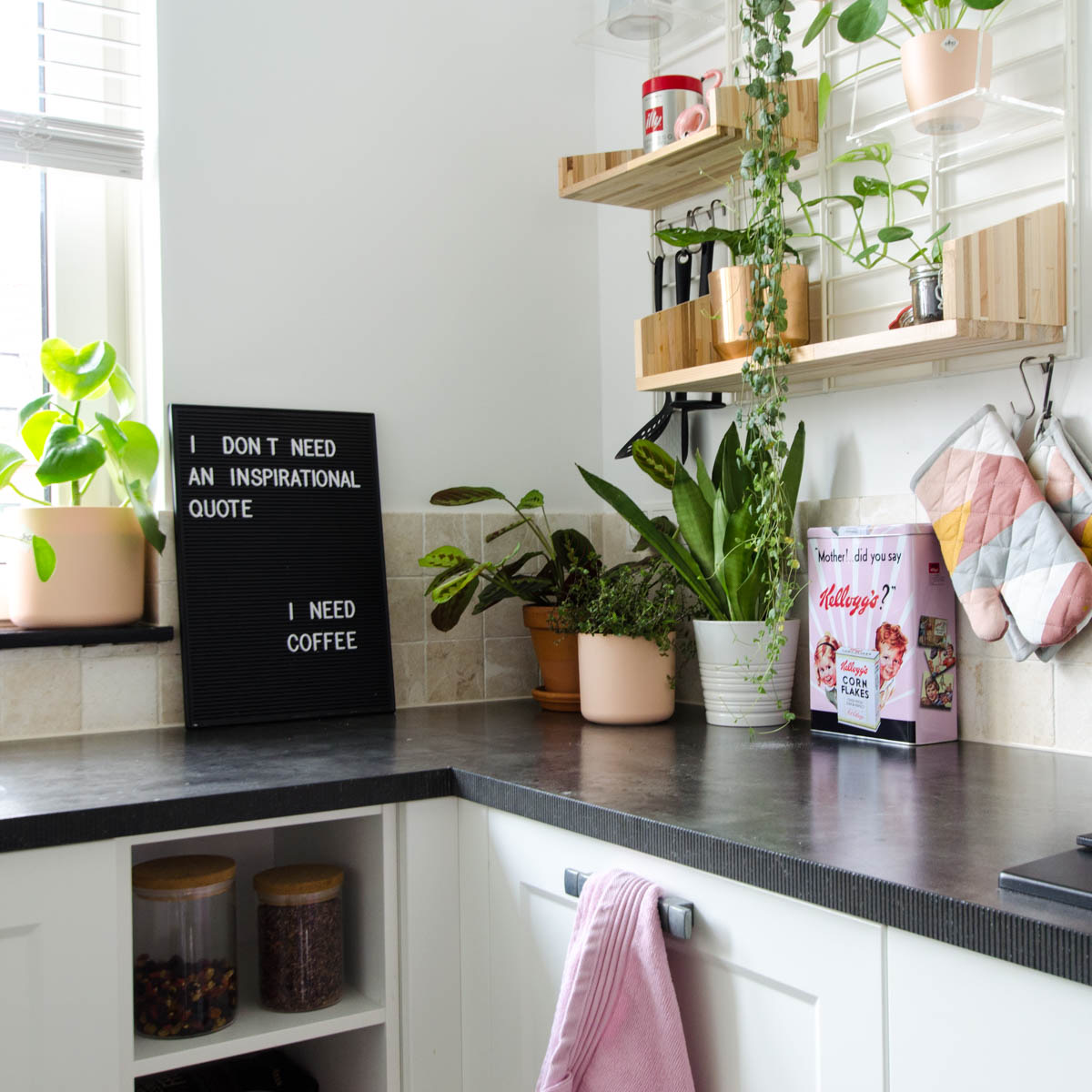 Wandrek Planten 5 Budget Items Om Je Keuken Een Mini Make Over Te Geven Styled