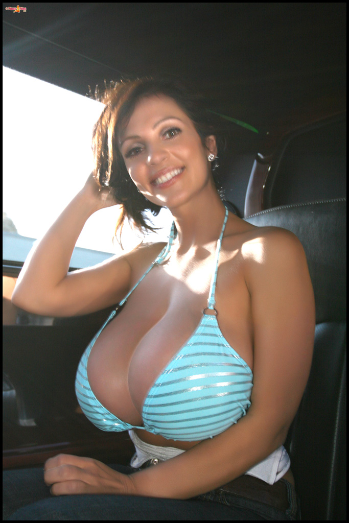 Cars Wallpaper For Google Denise Milani In Bikini In Car Style Gag