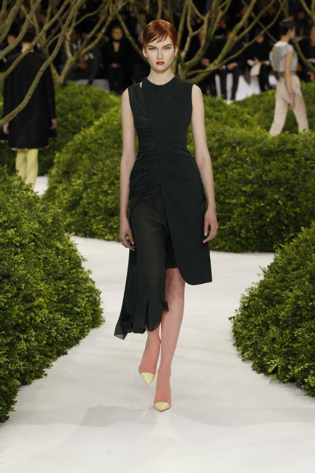Dior Haute Couture Spring Summer 2013 Collection 6