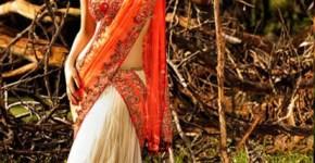 Superb lehenga Blouse Saree Fashion 2014 for Indian Women (6)
