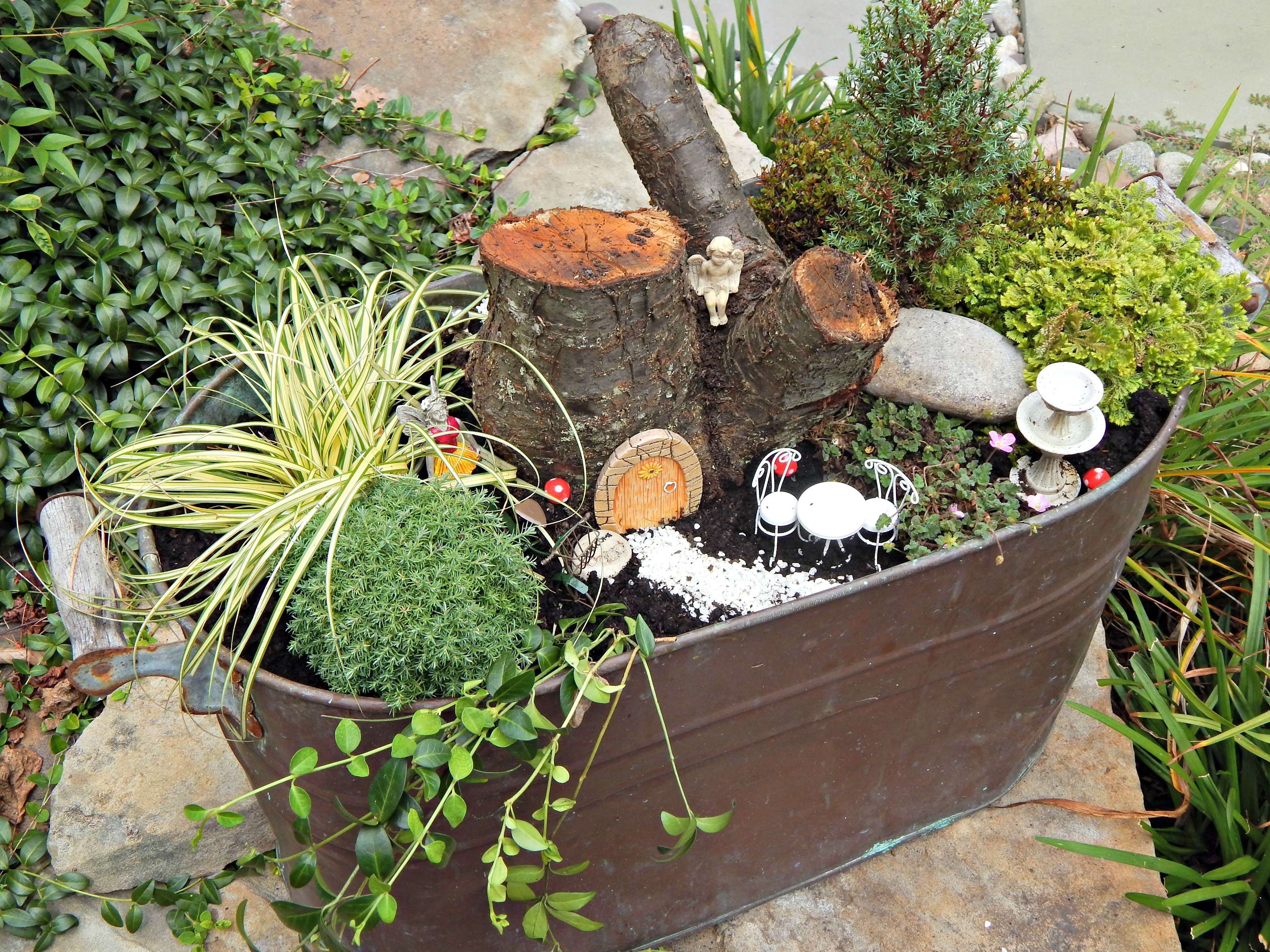Feengarten Anlegen Easy Diy Fairy Garden Stylish Revamp