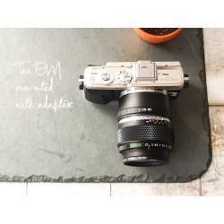 Small Crop Of Olympus Digital Camera