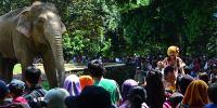 Minggu Cerah, Jakarta Hari Ini