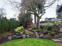 Plantings  Sublime Garden Design