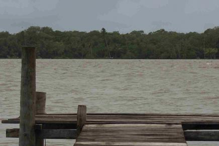 Hidroeléctricas: el despojo pintado de verde y la lucha por los ríos como bienes comunes
