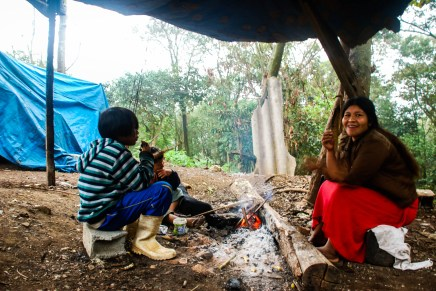 Pueblos indígenas son tragados por la ciudad más grande de América Latina: São Paulo