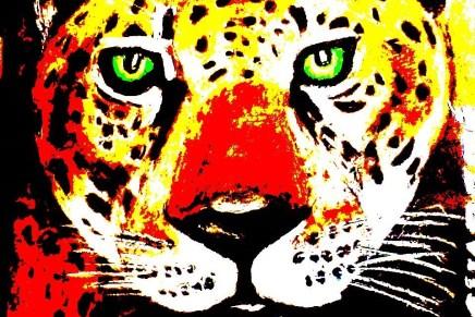 Amazonia bajo asedio. El último rugido del jaguar