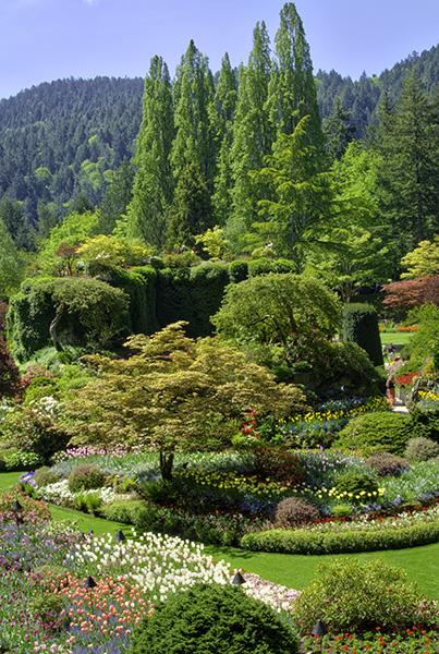 hdr bushart gardens