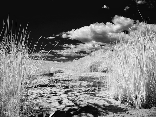 sedona wetlands infrared photo