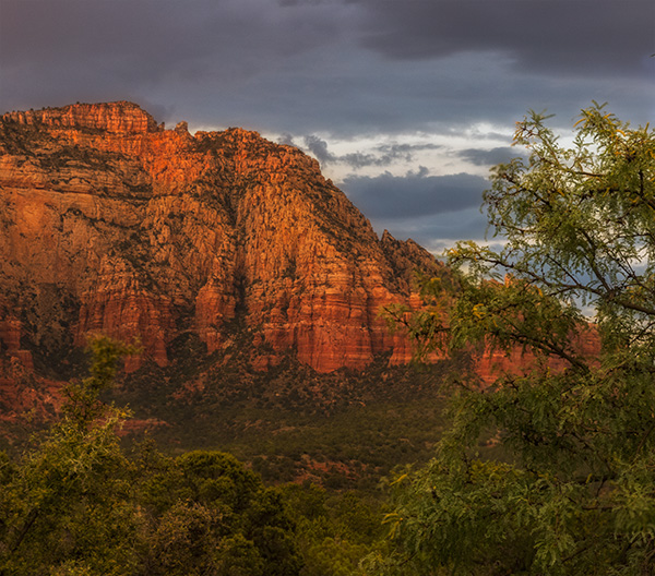 red rocks of sedona photo