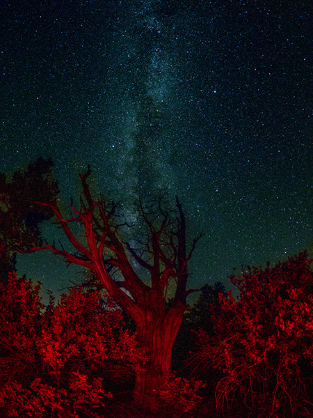 milky way photo sedona arizona