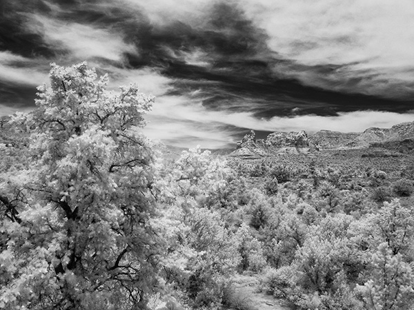 mariposa view in infrared