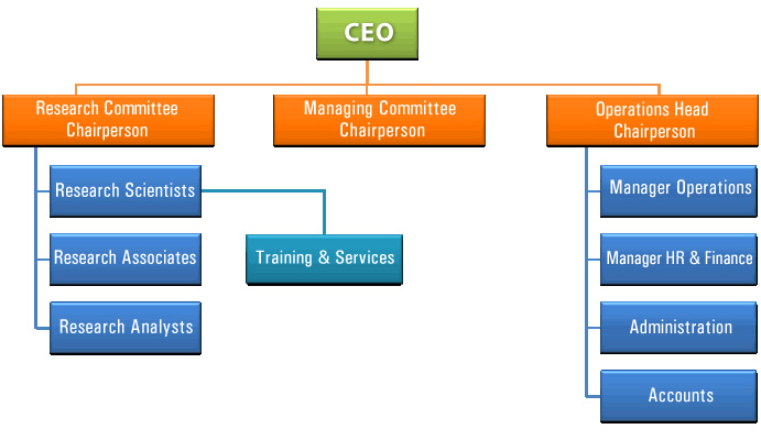 What Organizational Structure will you fit in with