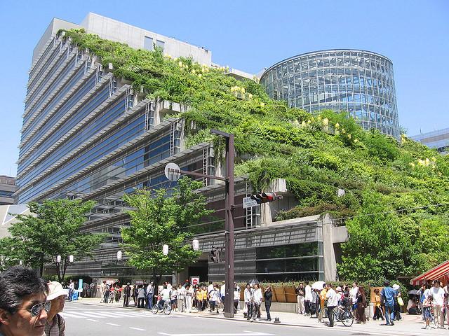 cubierta-verde-japon