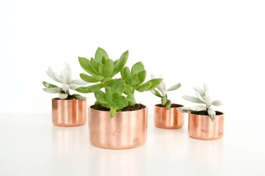 DIY mini copper planters by Sugar & Cloth for Poppytalk