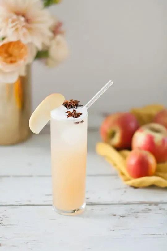 Apple Brandy Allspice Fizz 9