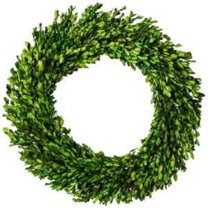 21-Inch-Preserved-Boxwood-Wreath