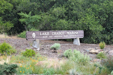 img 2724 Lake Chabot 5K and Half Marathon