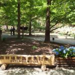 デートコースご紹介~その60~神戸市立森林植物園