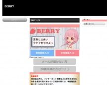 BERRY PC