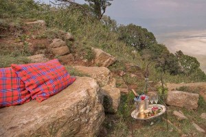 a-tanzania-safari