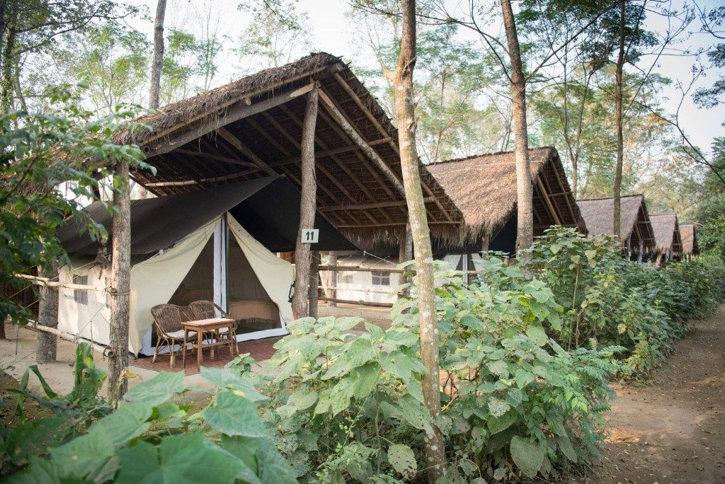 Houten Zwembad Op Maat Tiger Tops Jungle Lodge | Sundowner Wildlife Holidays