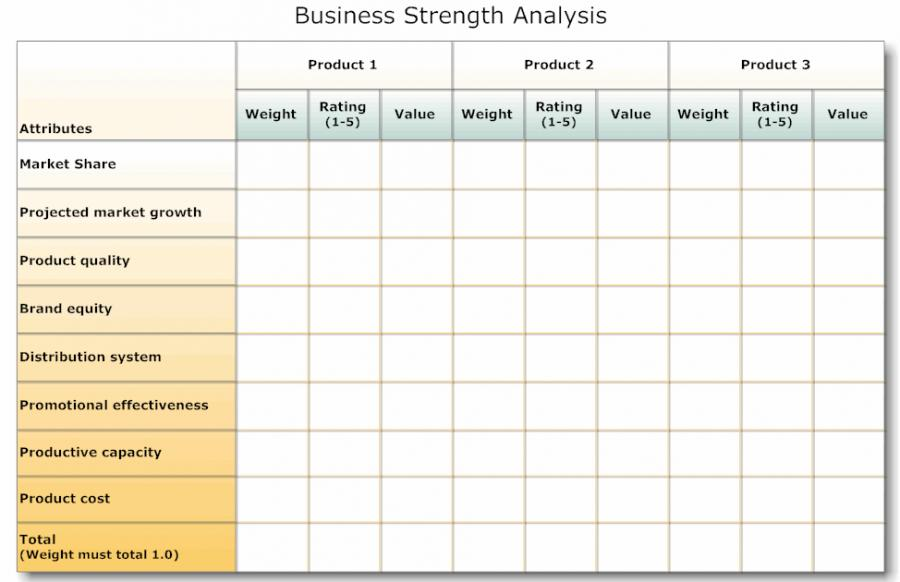 financial needs analysis template free - Eczasolinf - business needs assessment template