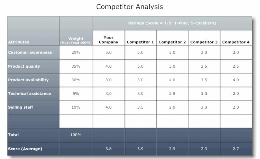 Sample Competitive Analysis 2 competitive analysis example letter
