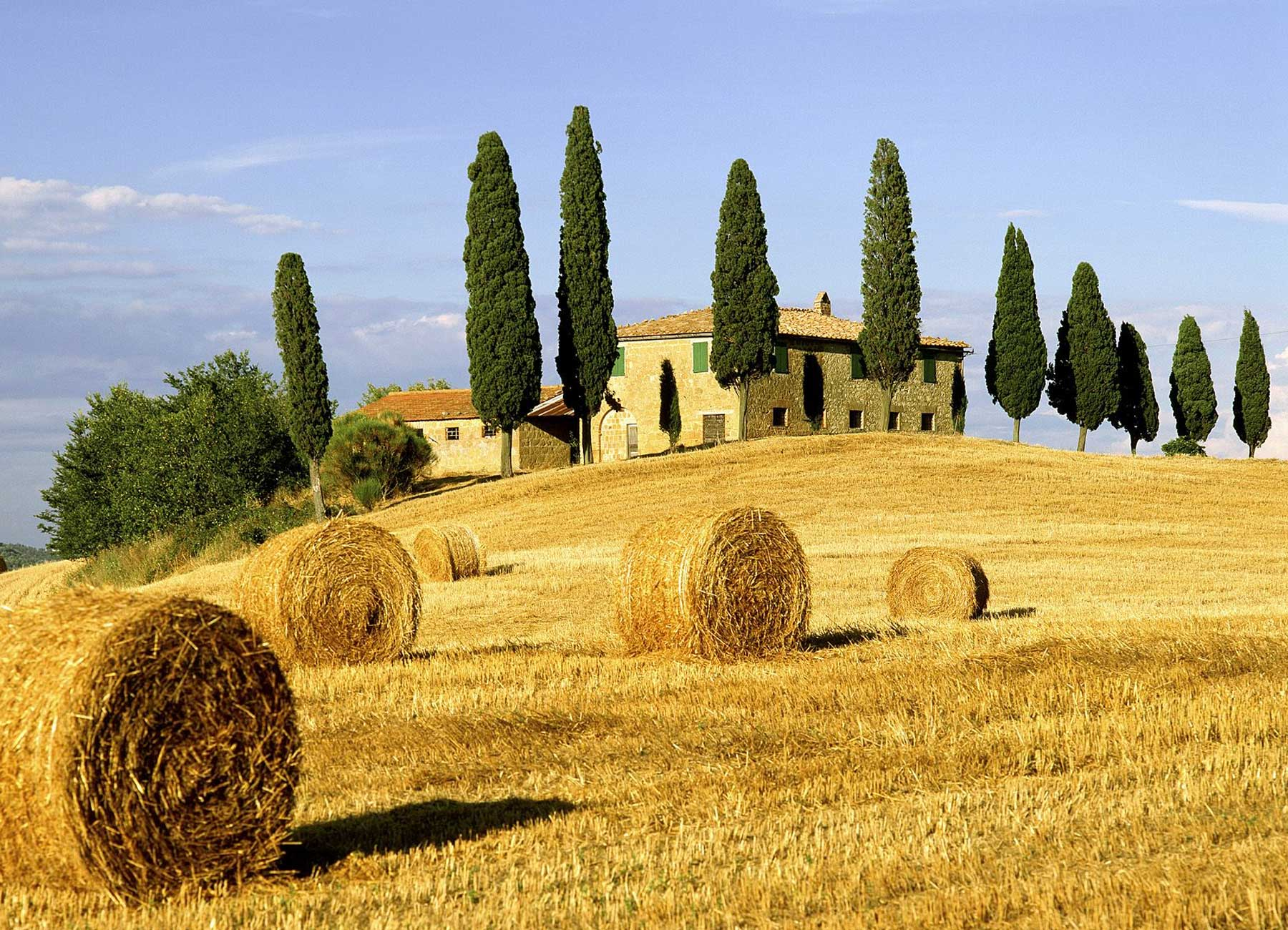Novello Bagni Tuscany Private Tours: Florence Guided Tours, Pisa & Lucca
