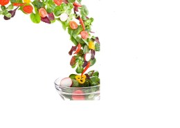 shutterstock_130352897(1) resized salad white