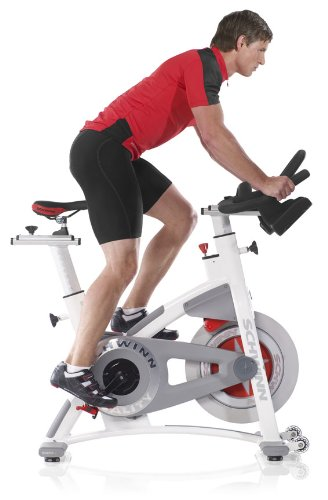 Schwinn AC Performance Plus Review
